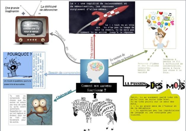 Les enfants à haut potentiel expliqués en deux infographies