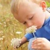 L'hyperstimulabilité sensorielle de l'enfant surdoué