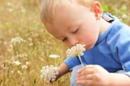 Enfant odorat