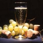 Logo du groupe Champagne-Ardenne Enfants Précoces