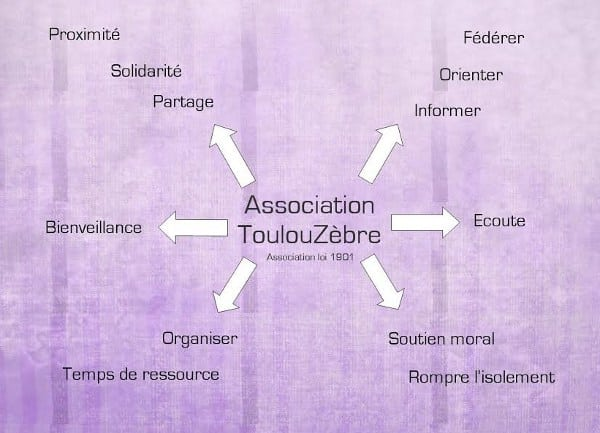 Association Toulouzèbre