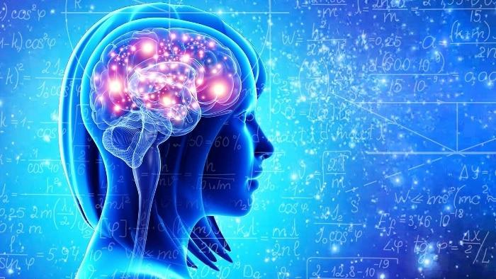 Les spécificités du cerveau des enfants précoces. Dominic Sappey-Marinier et Fanny Nusbaum, détaillent les résultats de l'étude menée sur les spécificités fonctionnelles du cerveau des enfants à haut potentiel.