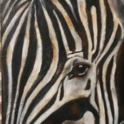 Illustration du profil de Il etait une fois un zebre