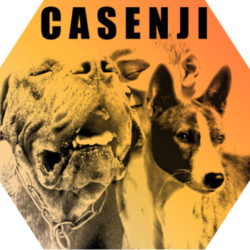 Illustration du profil de casenji