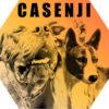 Illustration du profil de casenji