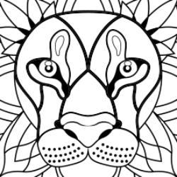 Illustration du profil de verodoudou