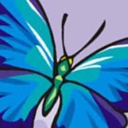 Illustration du profil de lespetitspapillons