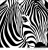 Illustration du profil de Guena
